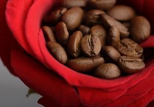 самый вкусный кофе получается из зерен арабики