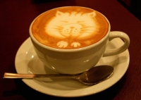 потрясающий напиток какао