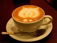 замечательный и полезный кофе с молоком