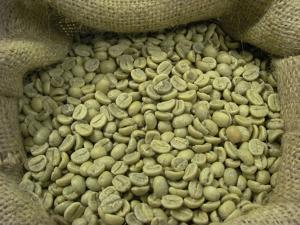 зеленый кофе для диабетиков