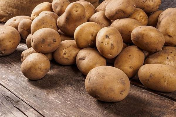 Где купить картофель